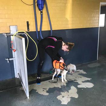 Dierencentrum FysOs - Hydrotherapie Voor Honden
